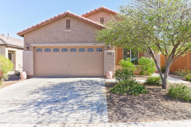 26145 W Piute Avenue, Buckeye, AZ 85396 (MLS #5771055) :: Five Doors Network