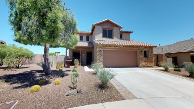 30981 N 127TH Avenue, Peoria, AZ 85383 (MLS #5771066) :: Five Doors Network