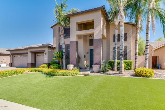 8156 W Gelding Drive, Peoria, AZ 85381 (MLS #5771094) :: Five Doors Network