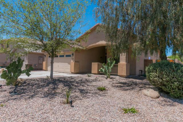 44754 W Horse Mesa Road, Maricopa, AZ 85139 (MLS #5771118) :: Yost Realty Group at RE/MAX Casa Grande