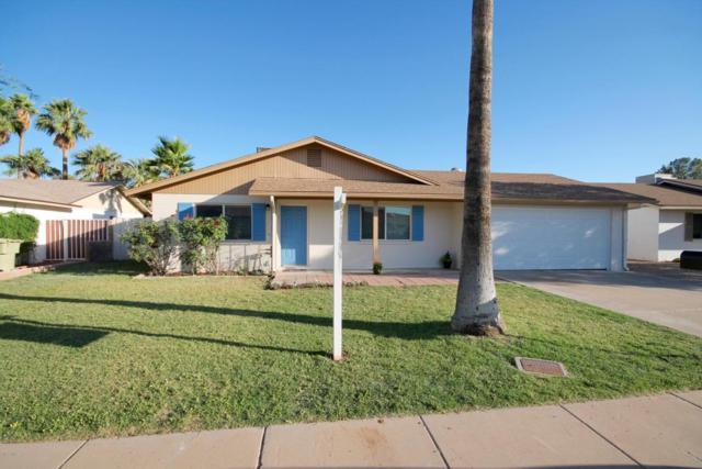 5431 W Saguaro Drive, Glendale, AZ 85304 (MLS #5771121) :: Five Doors Network