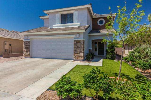 1696 W Prospector Way, Queen Creek, AZ 85142 (MLS #5771123) :: Yost Realty Group at RE/MAX Casa Grande