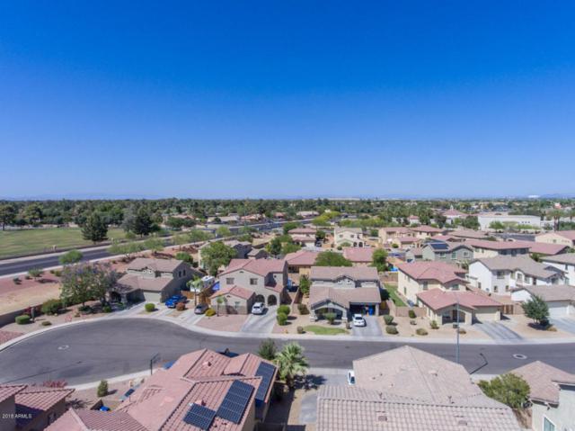 13314 W Indianola Avenue, Litchfield Park, AZ 85340 (MLS #5771128) :: Five Doors Network