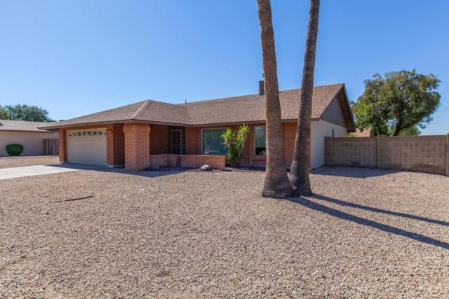 6215 W Willow Avenue, Glendale, AZ 85304 (MLS #5771132) :: Five Doors Network