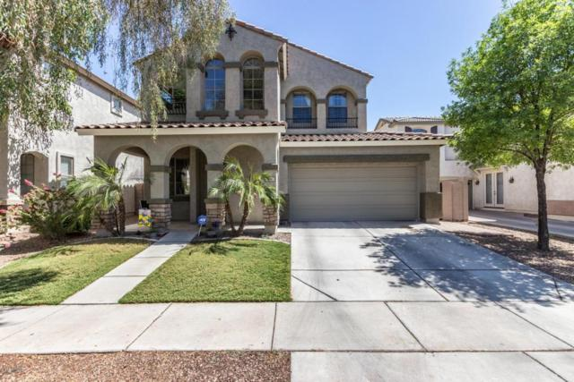 3647 E Moreno Street, Gilbert, AZ 85297 (MLS #5771174) :: Yost Realty Group at RE/MAX Casa Grande