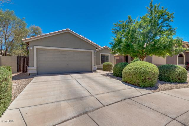 1545 E Falcon Court, Casa Grande, AZ 85122 (MLS #5771178) :: Arizona 1 Real Estate Team
