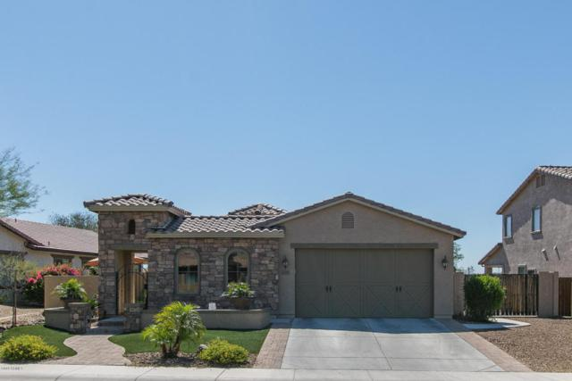 6981 W Mayberry Trail, Peoria, AZ 85383 (MLS #5771198) :: Five Doors Network
