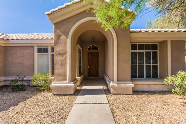 5542 E Blanche Drive, Scottsdale, AZ 85254 (MLS #5771203) :: Five Doors Network