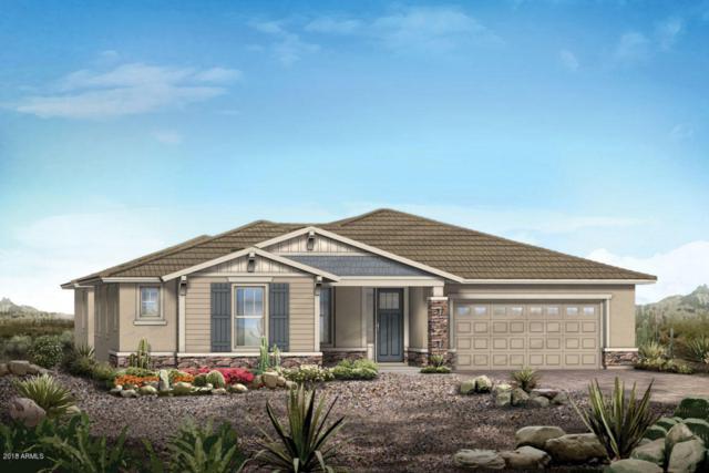 5054 N 146TH Drive, Litchfield Park, AZ 85340 (MLS #5771249) :: The Carin Nguyen Team