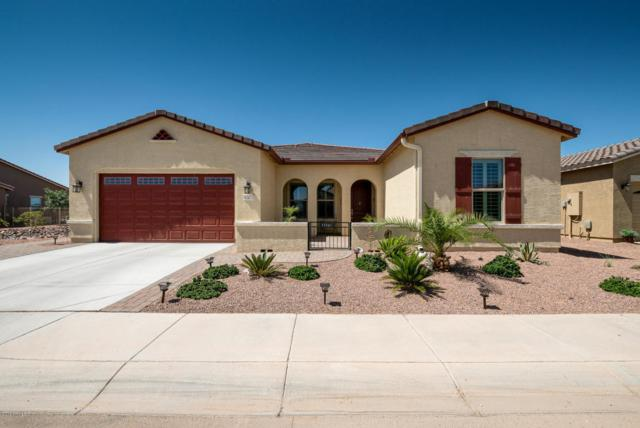 41673 W Harvest Moon Drive, Maricopa, AZ 85138 (MLS #5771255) :: Essential Properties, Inc.