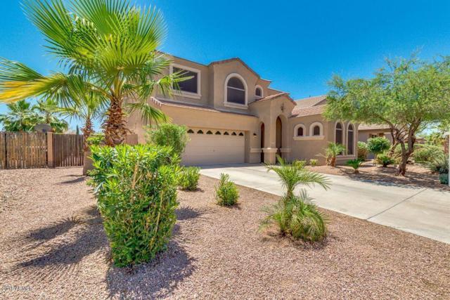 22535 N Van Loo Drive, Maricopa, AZ 85138 (MLS #5771262) :: Yost Realty Group at RE/MAX Casa Grande
