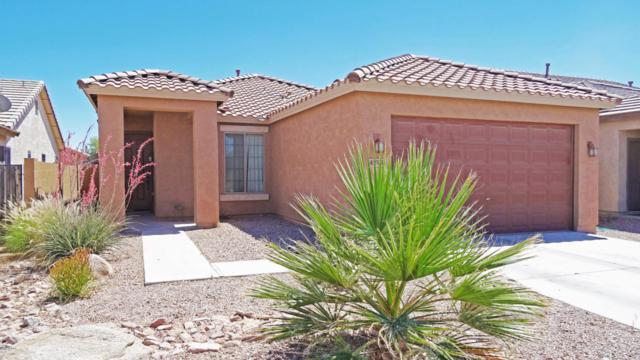 45975 W Holly Drive, Maricopa, AZ 85139 (MLS #5771288) :: Yost Realty Group at RE/MAX Casa Grande