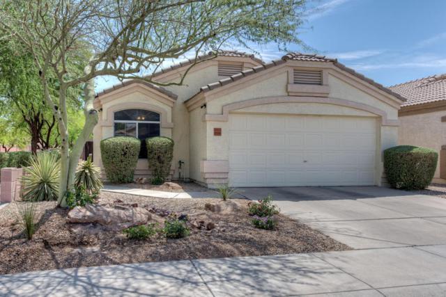 20423 N 30TH Way, Phoenix, AZ 85050 (MLS #5771335) :: My Home Group