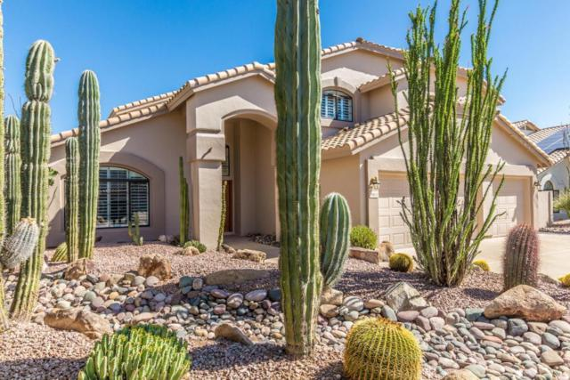 29821 N 43RD Way, Cave Creek, AZ 85331 (MLS #5771339) :: Lux Home Group at  Keller Williams Realty Phoenix