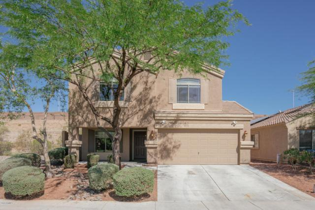 23920 N Pablo Court, Sun City, AZ 85373 (MLS #5771341) :: Desert Home Premier