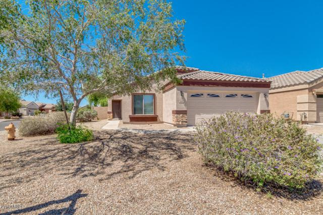 966 E Maddison Street, San Tan Valley, AZ 85140 (MLS #5771350) :: Yost Realty Group at RE/MAX Casa Grande