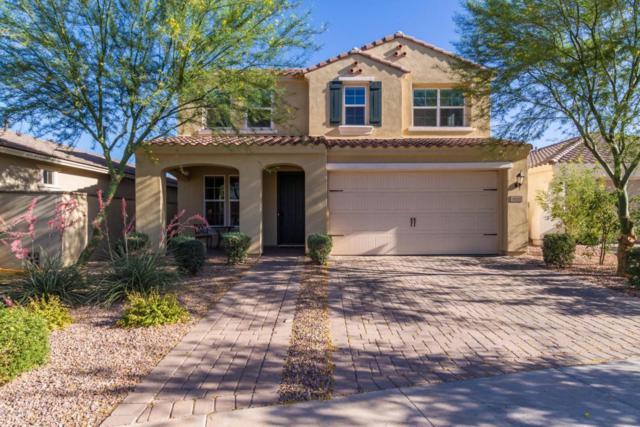 10323 E Hawk Avenue, Mesa, AZ 85212 (MLS #5771388) :: The Everest Team at My Home Group