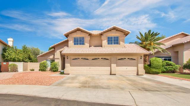 20263 N 56TH Drive, Glendale, AZ 85308 (MLS #5771389) :: Desert Home Premier