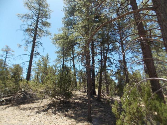3341 Sawmill Ridge Loop, Heber, AZ 85928 (MLS #5771390) :: Devor Real Estate Associates