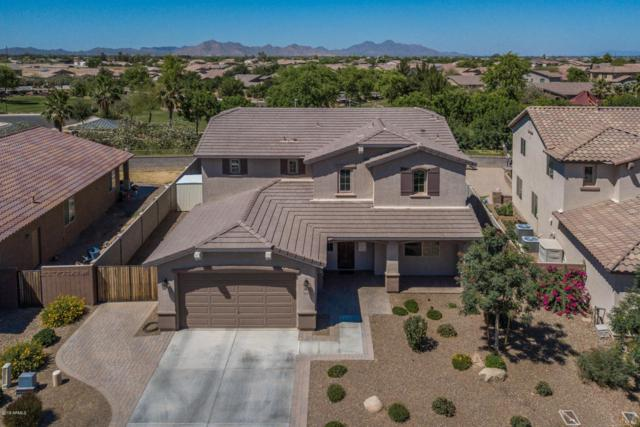 41218 N Oscar Street, San Tan Valley, AZ 85140 (MLS #5771392) :: My Home Group