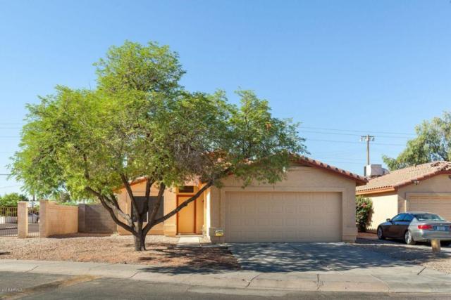 4545 N 67TH Avenue #1029, Phoenix, AZ 85033 (MLS #5771394) :: Yost Realty Group at RE/MAX Casa Grande