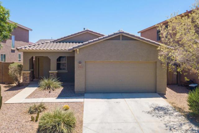 42563 W Somerset Drive, Maricopa, AZ 85138 (MLS #5771398) :: CANAM Realty Group