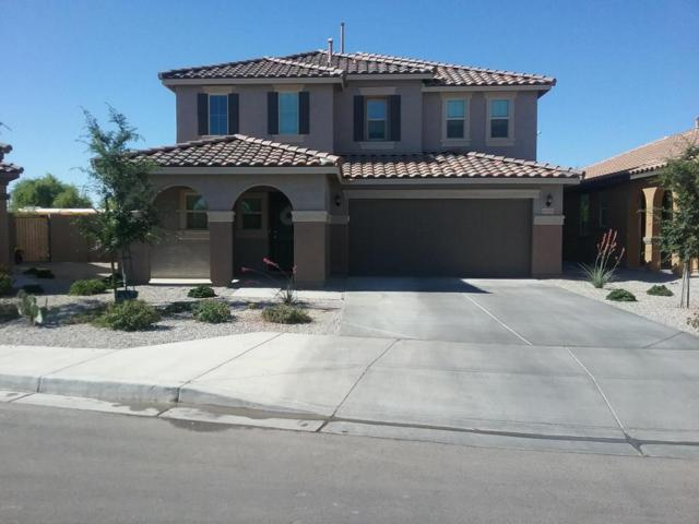 40785 W Mary Lou Drive, Maricopa, AZ 85138 (MLS #5771399) :: Arizona 1 Real Estate Team