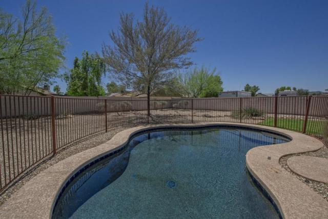 3049 W Rose Garden Lane, Phoenix, AZ 85027 (MLS #5771450) :: Yost Realty Group at RE/MAX Casa Grande