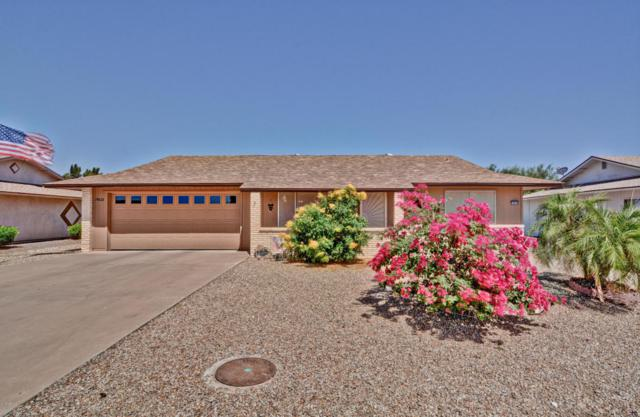 19632 N Concho Circle, Sun City, AZ 85373 (MLS #5771473) :: Desert Home Premier