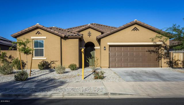 757 N 156TH Lane, Goodyear, AZ 85338 (MLS #5771491) :: My Home Group