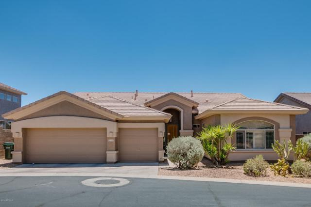5341 E Gloria Lane, Cave Creek, AZ 85331 (MLS #5771492) :: Yost Realty Group at RE/MAX Casa Grande