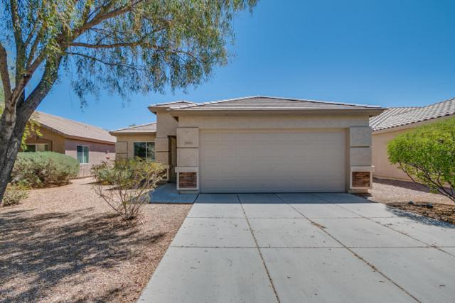 28083 N Silver Lane, San Tan Valley, AZ 85143 (MLS #5771520) :: My Home Group