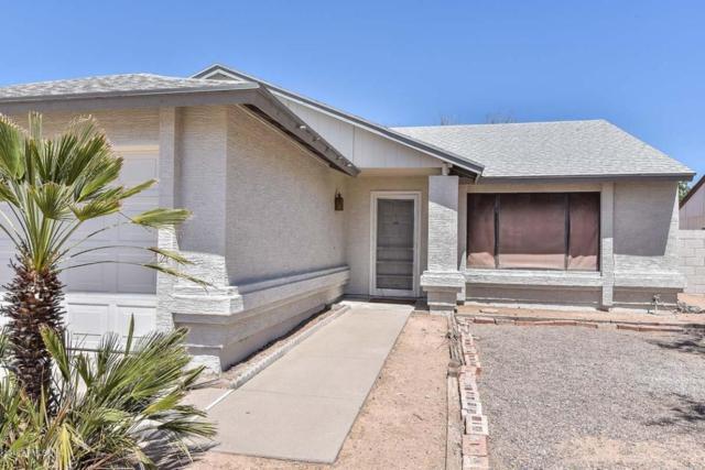 21067 N 33RD Lane, Phoenix, AZ 85027 (MLS #5771523) :: Yost Realty Group at RE/MAX Casa Grande