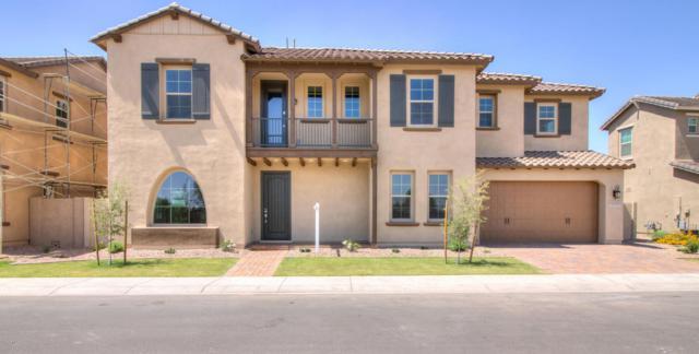 972 W Kaibab Drive, Chandler, AZ 85248 (MLS #5771541) :: Essential Properties, Inc.
