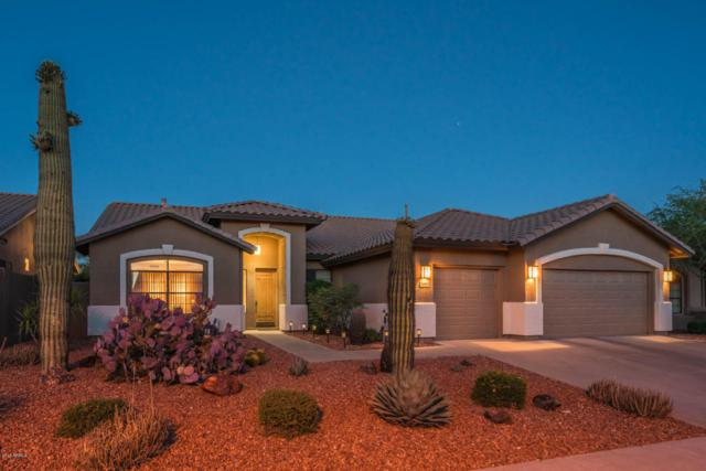 26803 N 45TH Place Look!!, Cave Creek, AZ 85331 (MLS #5771552) :: Yost Realty Group at RE/MAX Casa Grande