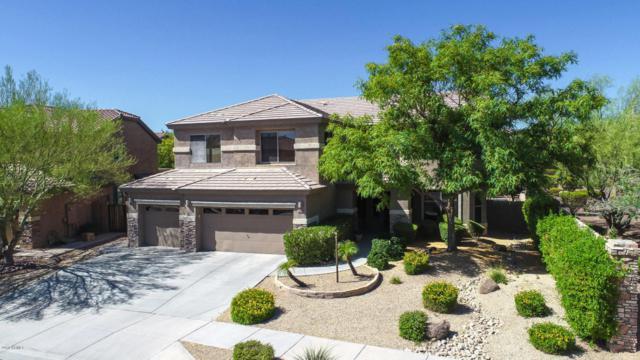 2306 W Red Range Way, Phoenix, AZ 85085 (MLS #5771553) :: Yost Realty Group at RE/MAX Casa Grande