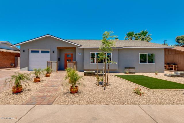 8522 E Vernon Avenue, Scottsdale, AZ 85257 (MLS #5771556) :: Arizona 1 Real Estate Team