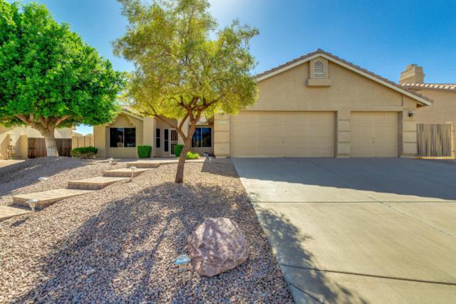 4336 N Everest Circle, Mesa, AZ 85215 (MLS #5771574) :: Arizona 1 Real Estate Team