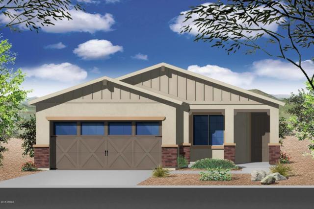 17156 W Orchid Lane, Waddell, AZ 85355 (MLS #5771584) :: Yost Realty Group at RE/MAX Casa Grande