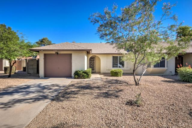 5616 W Commonwealth Place, Chandler, AZ 85226 (MLS #5771592) :: Arizona 1 Real Estate Team