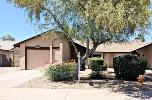 5608 W Commonwealth Place, Chandler, AZ 85226 (MLS #5771606) :: Arizona 1 Real Estate Team