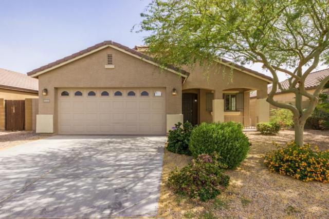 23839 W Lumbee Street, Buckeye, AZ 85326 (MLS #5771621) :: Desert Home Premier