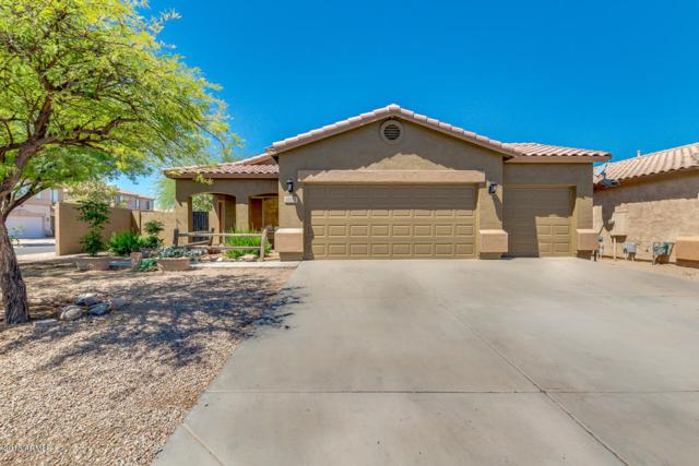 30012 N Desert Willow Boulevard, San Tan Valley, AZ 85143 (MLS #5771623) :: Yost Realty Group at RE/MAX Casa Grande