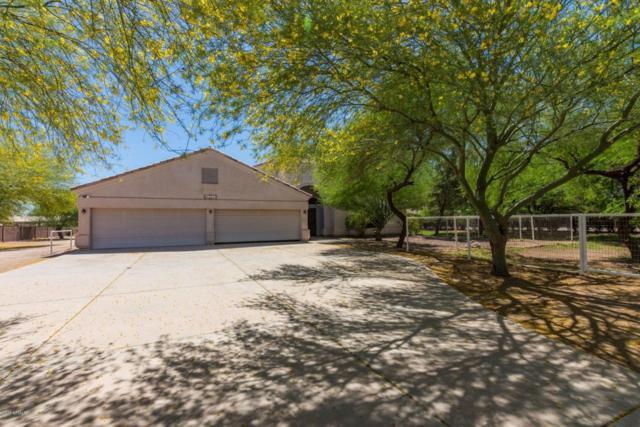 26319 S Grapefruit Drive, Queen Creek, AZ 85142 (MLS #5771624) :: The Pete Dijkstra Team