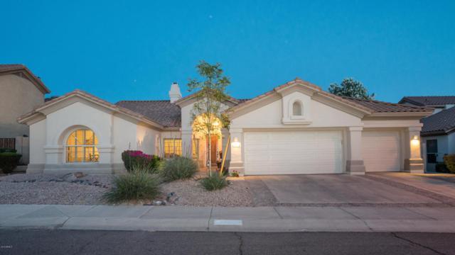 1325 E Desert Broom Way, Phoenix, AZ 85048 (MLS #5771633) :: Lux Home Group at  Keller Williams Realty Phoenix