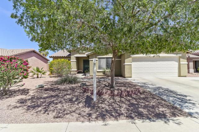 14517 N 150TH Lane, Surprise, AZ 85379 (MLS #5771634) :: Desert Home Premier
