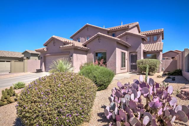 7616 E Elderberry Way, Gold Canyon, AZ 85118 (MLS #5771636) :: The Pete Dijkstra Team
