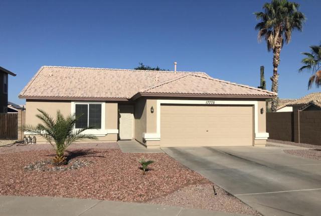 17775 N 143RD Circle, Surprise, AZ 85374 (MLS #5771643) :: Desert Home Premier