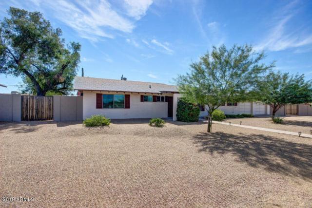 Mesa, AZ 85215 :: Arizona 1 Real Estate Team