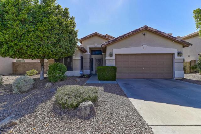 18408 N 54TH Lane, Glendale, AZ 85308 (MLS #5771676) :: Lux Home Group at  Keller Williams Realty Phoenix